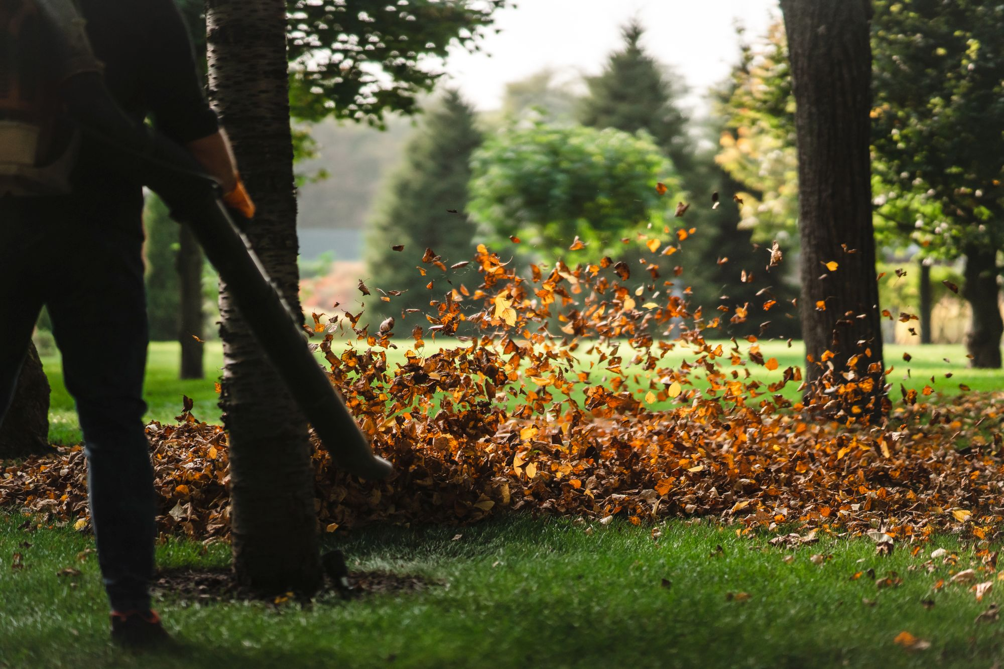 A takarítógép ősszel akár a lombfújásban is segíthet