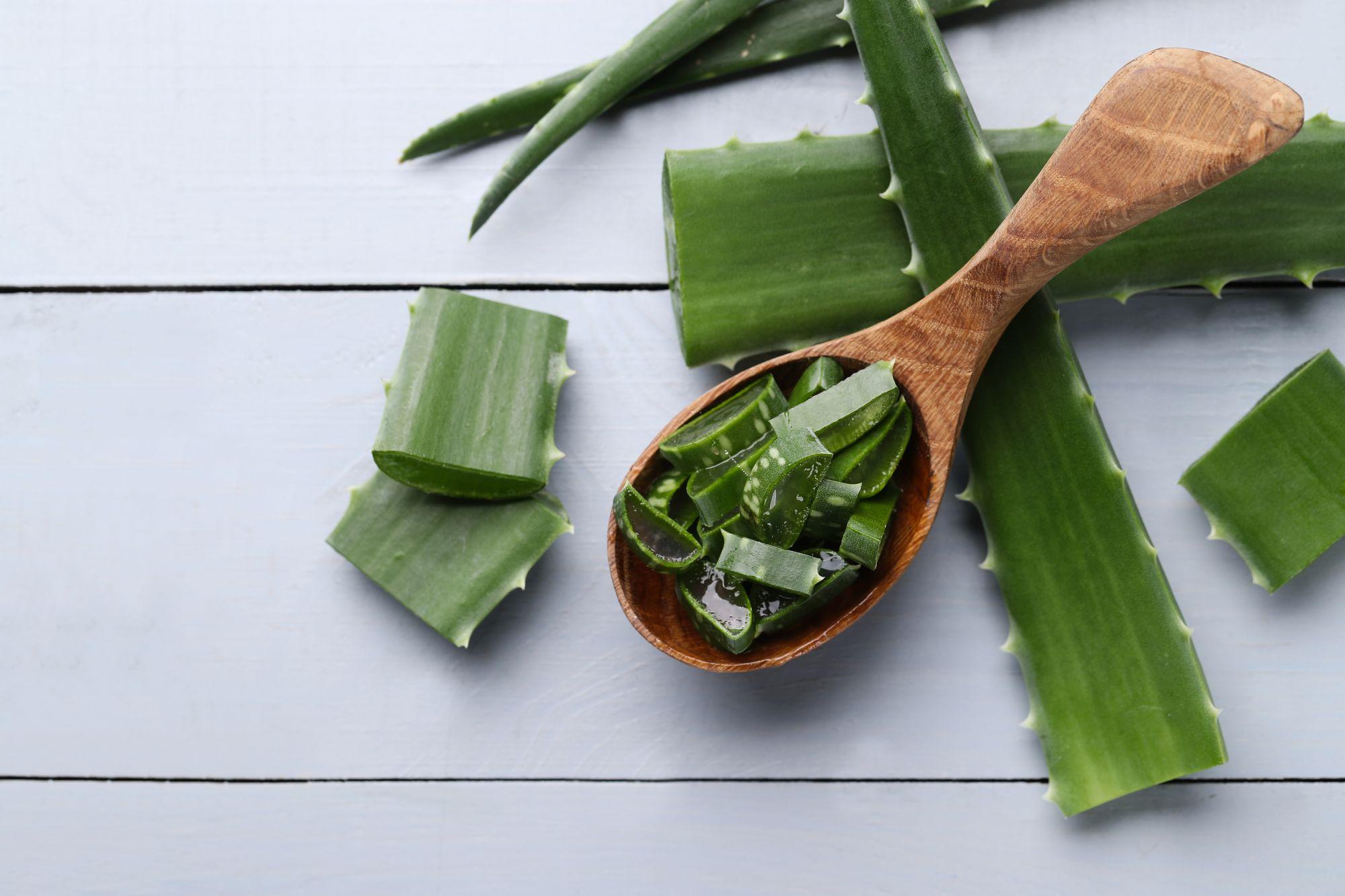 Az aloe vera gyakori hatóanyag a szempillanövesztőkben