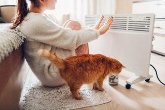 Egy nő és a cicája elektromos fűtőtestnél melegszik