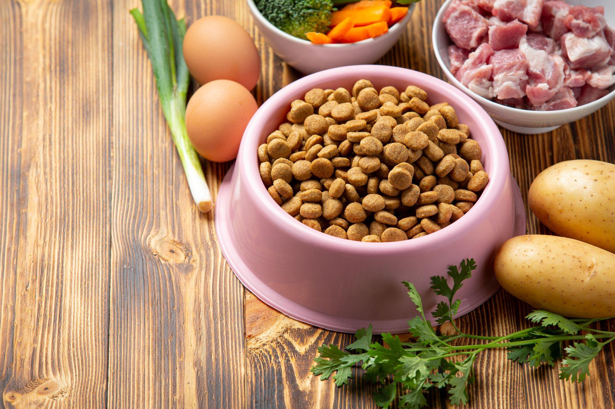 Fontos a változatosság a macska étrendjében